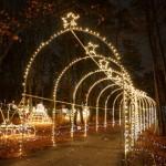 hol-lights-dsc01037-2-150x150